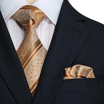 Amazon.com: Landisun 10L Copper Novelty Pattern Mens Silk Tie Set: Tie+Hanky &Plastic Hook: Clothing