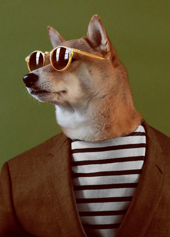Menswear Dog sits for an interview and