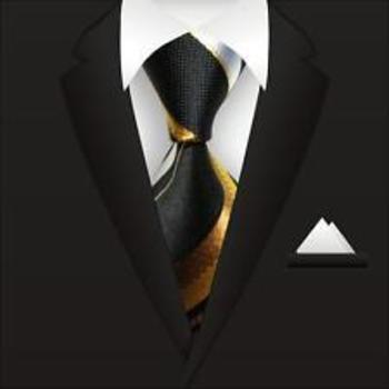 New Classic Striped WOVEN JACQUARD Silk Men's Suits Tie Necktie Black Gold N21